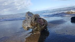 Rock on beach in Hawaii. A closeup of a beach rock in Hawaii with the ocean on the background Stock Image