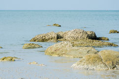 Rock on beach. Royalty Free Stock Photo
