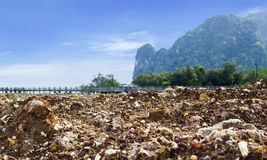 Rock beach in Krabi Stock Images