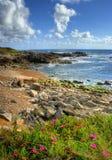 Rock beach in Vila Praia de Ancora Stock Photography