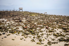 Rock beach and wooden port Royalty Free Stock Images
