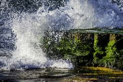 Waves crashing on green moss covered rock royalty free stock photos