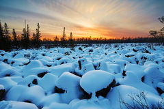 The rock-block field covered with snow and sunset glow Royalty Free Stock Photos