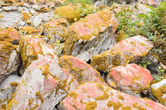 Rock boulders covered with orange lichens and moss Royalty Free Stock Photography