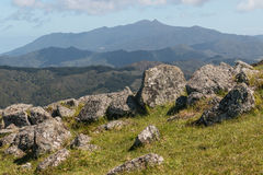 Rock boulders on slope in Coromandel Range Royalty Free Stock Photo