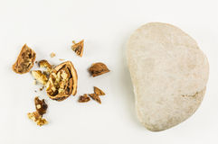 Rock and broken nut. White rock and broken nut on white Stock Photography