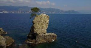 The Rock of Cadrega, maritime pine tree, aerial view, waterfront between Santa Margherita Ligure and Portofino Liguria,. The Rock of Cadrega, maritime pine tree stock footage