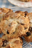 Rock Cakes Royalty Free Stock Photography