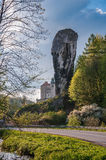 Rock called Hercules Club in Ojcow National Park Stock Photos