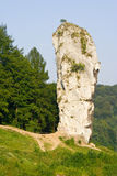 Rock called Maczuga Herkulesa in National Ojcow Park, Poland Royalty Free Stock Photography