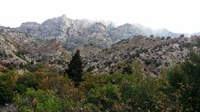 Rock Canyon Autumn Cliffs royalty free stock images