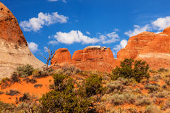 Rock Canyon Devils Garden Arches National Park Moab Utah Stock Image