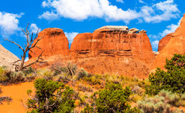Rock Canyon Devils Garden Arches National Park Moab Utah Stock Photos