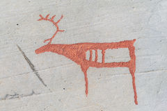 Rock carvings in Alta Norway reindeer stock photos