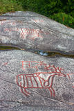 Rock carvings Stock Images