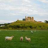 Rock of Cashel Royalty Free Stock Photography