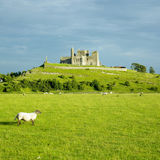 Rock of Cashel. In County Tipperary, Ireland Royalty Free Stock Photos