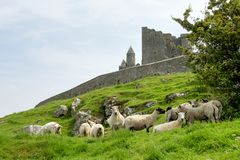 The Rock of Cashel, County Tipperary in Ireland stock photo