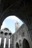 Rock of cashel church arches Royalty Free Stock Image