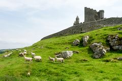 The Rock of Cashel, County Tipperary in Ireland. stock image