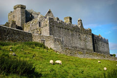 Rock of Cashel, Ireland Stock Photos