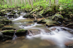 Rock Castle Creek. Is a beautiful wild trout stream with many small isolated waterfalls located in Rock Castle Gorge off the Blue Ridge Parkway in Floyd County Royalty Free Stock Photos