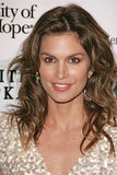 Cindy Crawford Royalty Free Stock Photography
