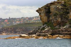 Rock Cliff. On harbor with houses in background Royalty Free Stock Photos
