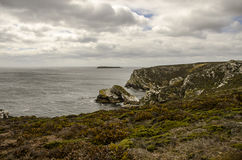 ROCK CLIFF IN FALKLAND ISLANDS. Stock Images