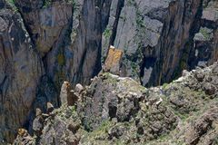 Rock cliff. The scenery of steep rock cliff royalty free stock photography