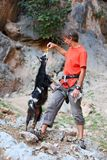 Rock climber feeding a goat at a cliff stock image