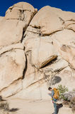 Rock Climber Planning Route - Intersection Rock - Joshua Tree Nat Royalty Free Stock Photos
