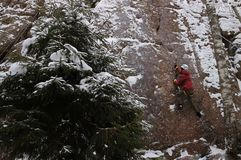 Rock climber on a rock in a winter forest royalty free stock photography