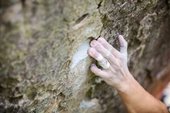 Rock climber`s hand gripping small hold on natural cliff Stock Photo