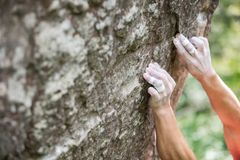 Rock climber`s hands gripping small holds. On natural cliff Royalty Free Stock Photo