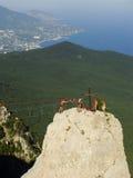 Rock climbers at Ai-Petri summit, Crimea. Peninsula, Ukraine stock photography