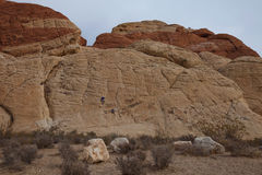 Rock Climbers using ropes at Red Rock Canyon. Royalty Free Stock Images