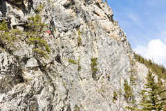 Rock climbers Rocky Mountains Royalty Free Stock Photos