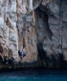 Rock Climbers Royalty Free Stock Image