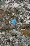 Rock-climbing mark in fontainebleau. Blue star a rock-climbing mark in fontainebleau a french forest Stock Images