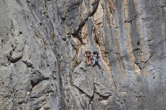 Rock climbing in Paklenica national park Royalty Free Stock Image