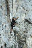 Rock Climbing Stock Photography