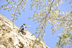 Rock climbing in spring Royalty Free Stock Images