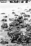 Rock coast Royalty Free Stock Image