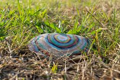 Rock with colorful painted circles, lying in green grass royalty free stock photos