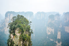 Rock column in Zhangjiajie National forest park. Top of rock column (Avatar rocks). Zhangjiajie National Forest Park , UNESCO World Heritage Site - China royalty free stock images
