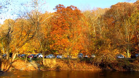 Rock Creek Fall Foliage Stock Photo