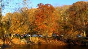 Rock Creek Fall Foliage stock video footage