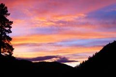 Rock Creek Montana royaltyfria bilder