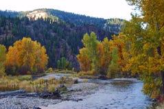 Rock Creek, Montana, cores da queda Fotos de Stock Royalty Free